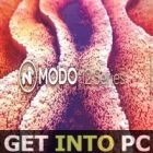 The Foundry MODO 12.1-icon-getintopc