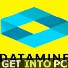 Datamine Studio 5D Planner 2019-icon-getintopc