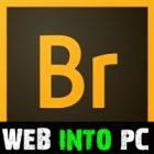 Adobe Bridge CC 2017 get into pc