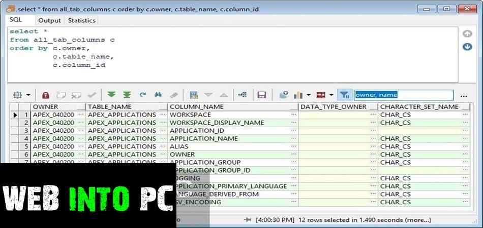 Allround Automations PL SQL Developer 2020-get intopc