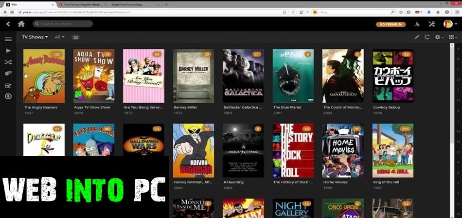 Movienizer-get into pc