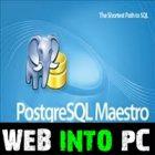 PostgreSQL Maestro Professional 2019 web into pc