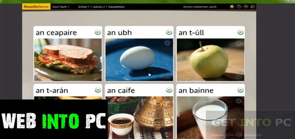 Rosetta Stone Irish with Audio Companion-getintopc
