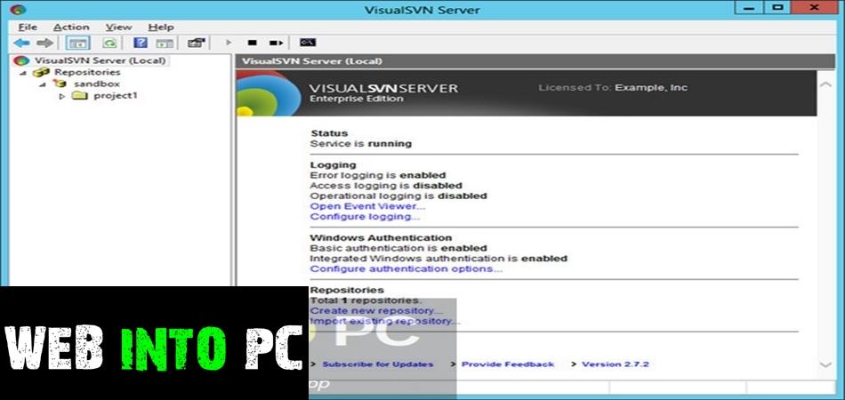 VisualSVN Server Enterprise 3.9.2-getintopc